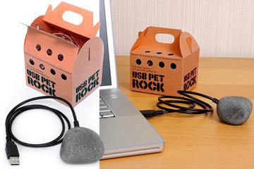 Pet Rock USB