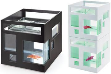 Acquario FishHotel