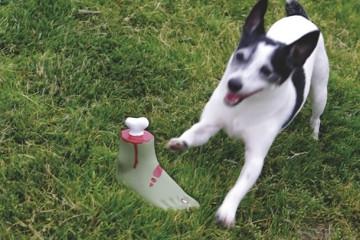 Un piede di zombie per cani