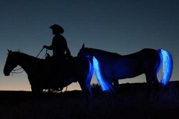 Tail Lights, i LED per le code di cavallo