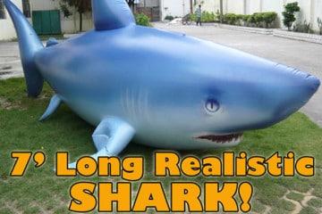 Lo squalo gigante