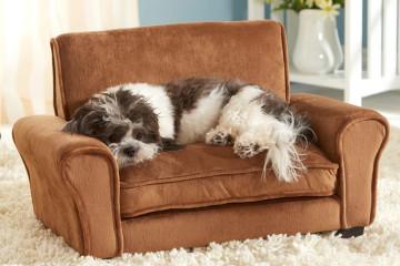 Il divanetto per animali domestici