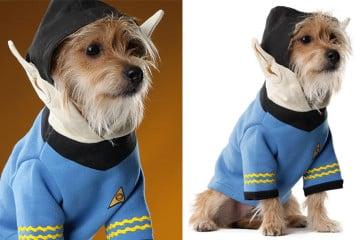Il costume da cane vulcaniano