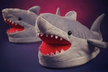 Le pantofole Squalo