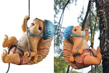 Lo scoiattolo alpinista