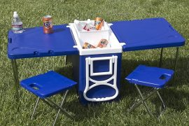 Borsa frigo da picnic