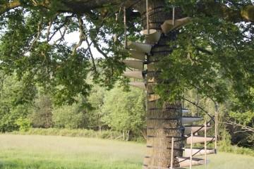 Scale a chiocciola da albero