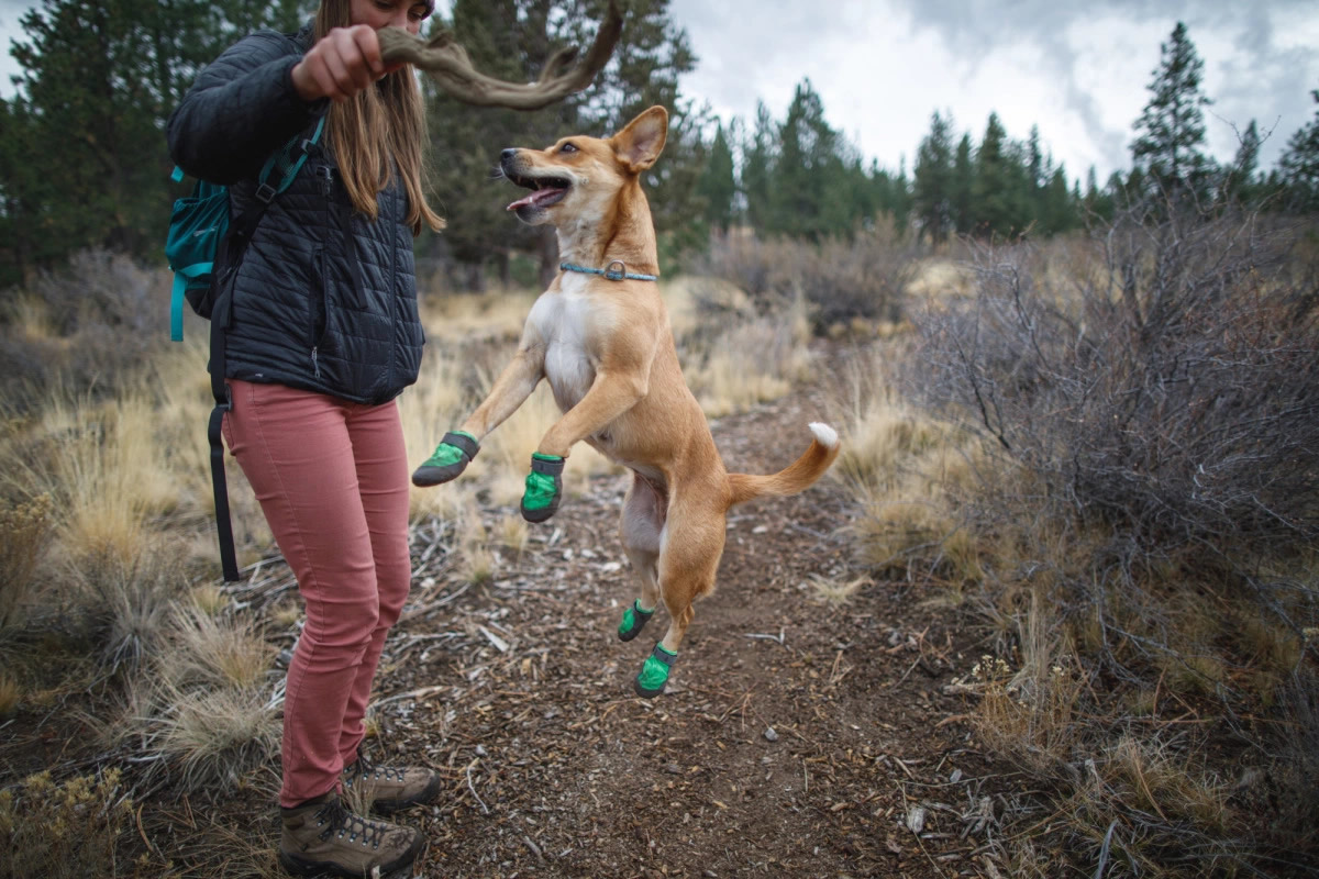scarpe-per-cani-ruffwear-trex