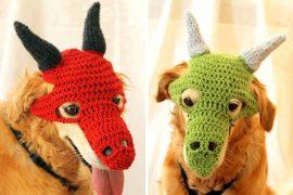 Costume per cane: Drago
