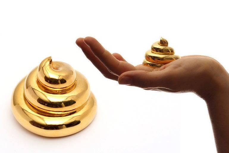 La cacca d 39 oro perfetta - Bagno sporco di cacca ...
