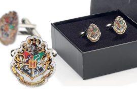 Gemelli di Hogwarts