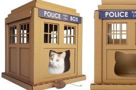 Casette per gatti NERD