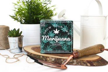 Kit Fai crescere la tua Marijuana