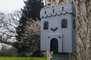 Castello per pipistrelli