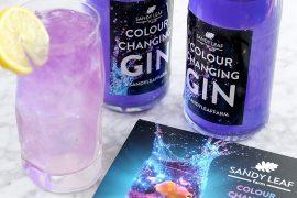 Gin cambia colore