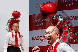Robot dispenser di pomodori