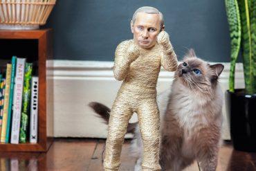 Putin Tiragraffi