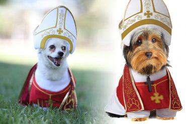 Costume da Papa per cani