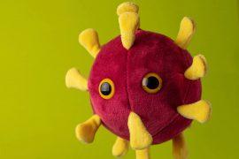 Peluche Coronavirus
