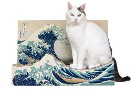 La grande onda per gatti